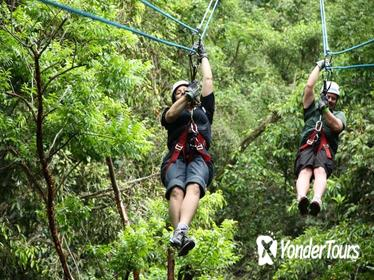 Ixpanpajul Natural Park Zipline and Eco-Adventure Tour from Flores