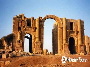 Jerash Ajlun and Amman Panoramic Full Day Tour from Amman