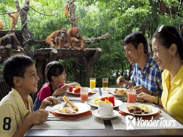 Jungle Breakfast at Singapore Zoo with Return Transfers