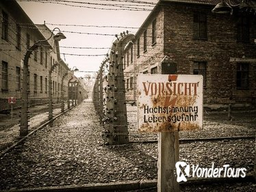 Krakow and Auschwitz 1 Day Tour from Lodz