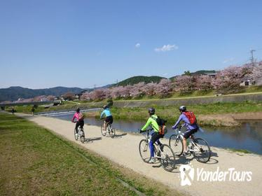 Kyoto Small-Group Bike Tour