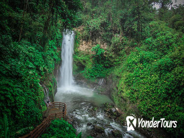 La Paz Waterfall Garden Tour from San Jose