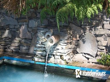 Lake Rotorua Hot Springs and Jet Boat Tour