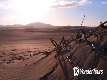 Lanzarote Volcanic Interior and Off-Road 4x4 Jeep Full-Day Tour