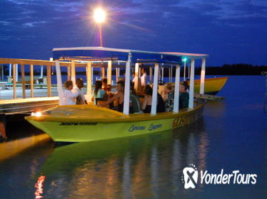 Luminous Lagoon Tour from Montego Bay and Grand Palladium