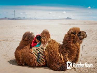 Mongolia In 3 Days