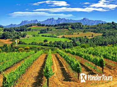 Montserrat and Penedès Small Group Tour with Hotel Pick Up from Barcelona