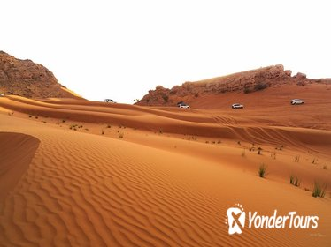 Morning Safari with Evening Rustar Dinner Cruise From Dubai