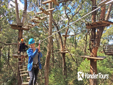 Mornington Peninsula Enchanted Adventure Garden Ziplining and Canopy Tour