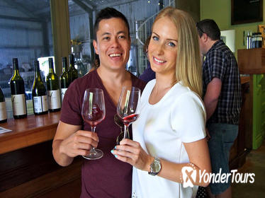 Mount Tamborine Wine and Winery Tour from Brisbane or the Gold Coast