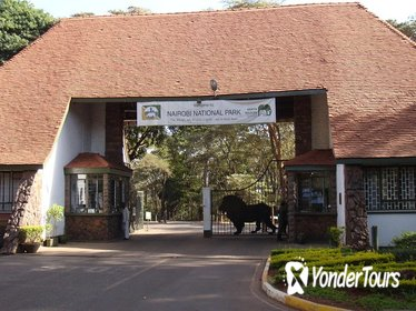 Nairobi National Park Game Drive