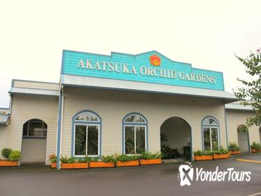 Orchid Gardens Tour and Tasting