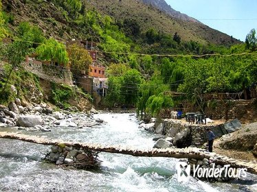 Ourika Valley and Atlas Mountains Full Day Tour with Lunch