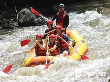 Package Ayung Rafting and Ubud Tours