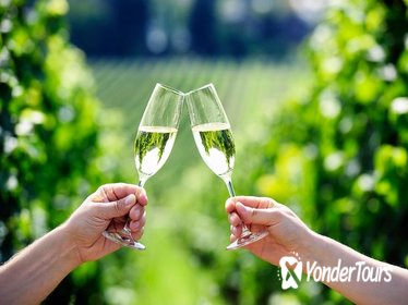 Penedes Wine and Cava Day Tour from Barcelona