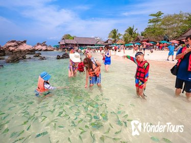 Phi Phi & Khai Island Full Day Tour from Phuket by Speedboat including Lunch