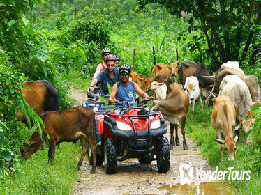 Phuket ATV Bike Tour