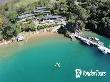 Picton Shore Excursions - Marlborough Sounds Cruise and Lochmara Day visit