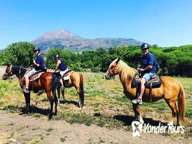 Pompei Ruins & Horseback riding on Vesuvius