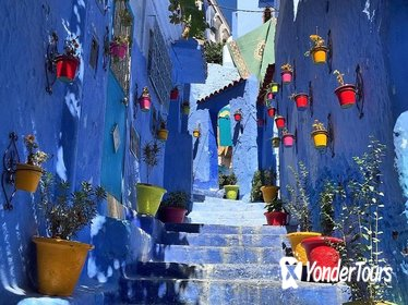 Private 7-Day Tour to Desert and Chefchaouen from Casablanca