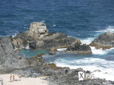 Private Aruba Natural Pool Horseback-Riding Tour