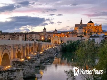 Private Cordoba City Tour from Seville