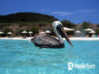 Private Curaçao Beaches Tour Including Kenepa Beach