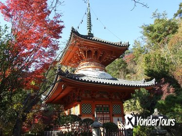 Private Customized Sightseeing Tour in Hiroshima with a Guide