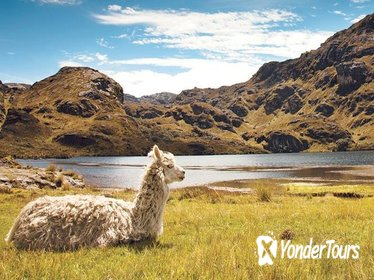 Private Day Tour to Cajas National Park from Cuenca