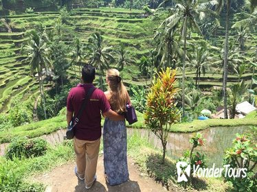 Private Full-Day Tour: All About Ubud