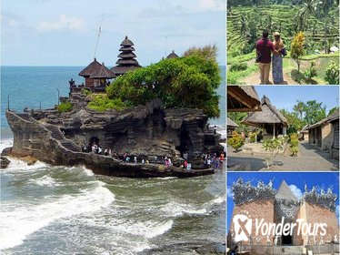 Private Full-Day Tour: Ubud Tanah Lot Experience
