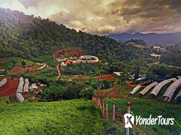 Private Half-Day Hmong Nong Hoi Village and Botanic Garden in Chiang Mai