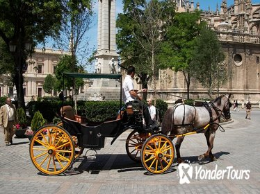 Private Horse Carriage Ride and Walking Tour of Seville