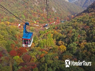Private Maple Tree and Mt. Naejang Day Trip from Seoul