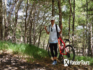 Private Mountain Bike Tour on the Banks of the Simeto River