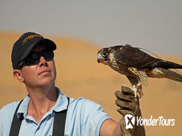 Private Tour: Falconry Experience and Wildlife Tour in Dubai