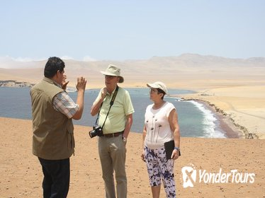 Private Tour: Full-Day Paracas Tour from Lima