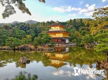 Private Tour: Kyoto Highlights in Full Day