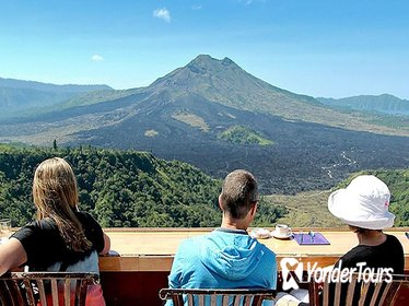 Private Tour: Waterfall, Kintamani Volcano, Ubud Tour with Lunch