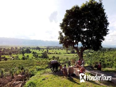 Private: Cycling to a Vineyard to enjoy Sunset and Wine from Inle Lake