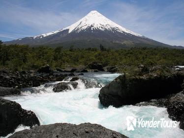 Puerto Montt Shore Excursion: Petrohu e Falls Tour