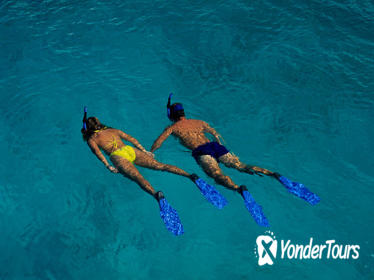 Roatan Shore Excursion: Snorkeling Tour