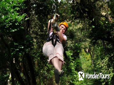 Roatan Shore Excursion: Zip 'n' Dip Canopy Tour