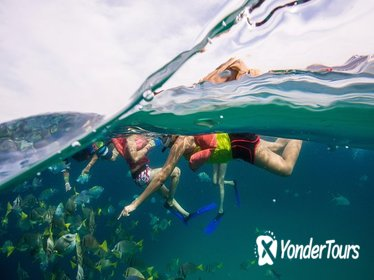 Romantic Getaway in Cabo San Lucas: Snorkel and Glass Bottom Boat Tour