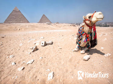 Safari Tour: Horse or Camel Ride at Sunrise at Giza