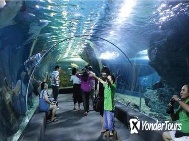 Sea Life Bangkok Admission Ticket