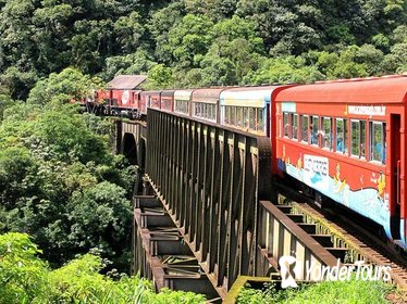 Serra Verde Express: Rail Tour to Morretes and Antoninna from Curitiba