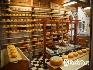 Sightseeing Tour Cheese Factory, Wooden shoe Factory & Windmills from Amsterdam