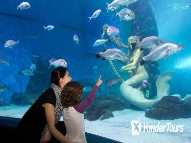 Skip the Line: SEA LIFE Melbourne Aquarium Admission Ticket