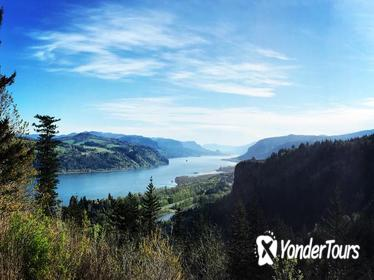 Small Group: Columbia River Gorge Waterfalls Tour